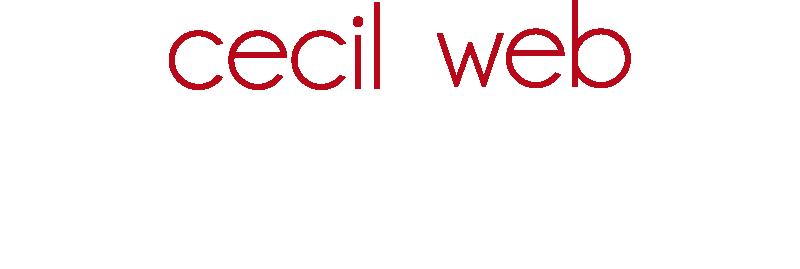 Web Designer - Cecil Web Designs